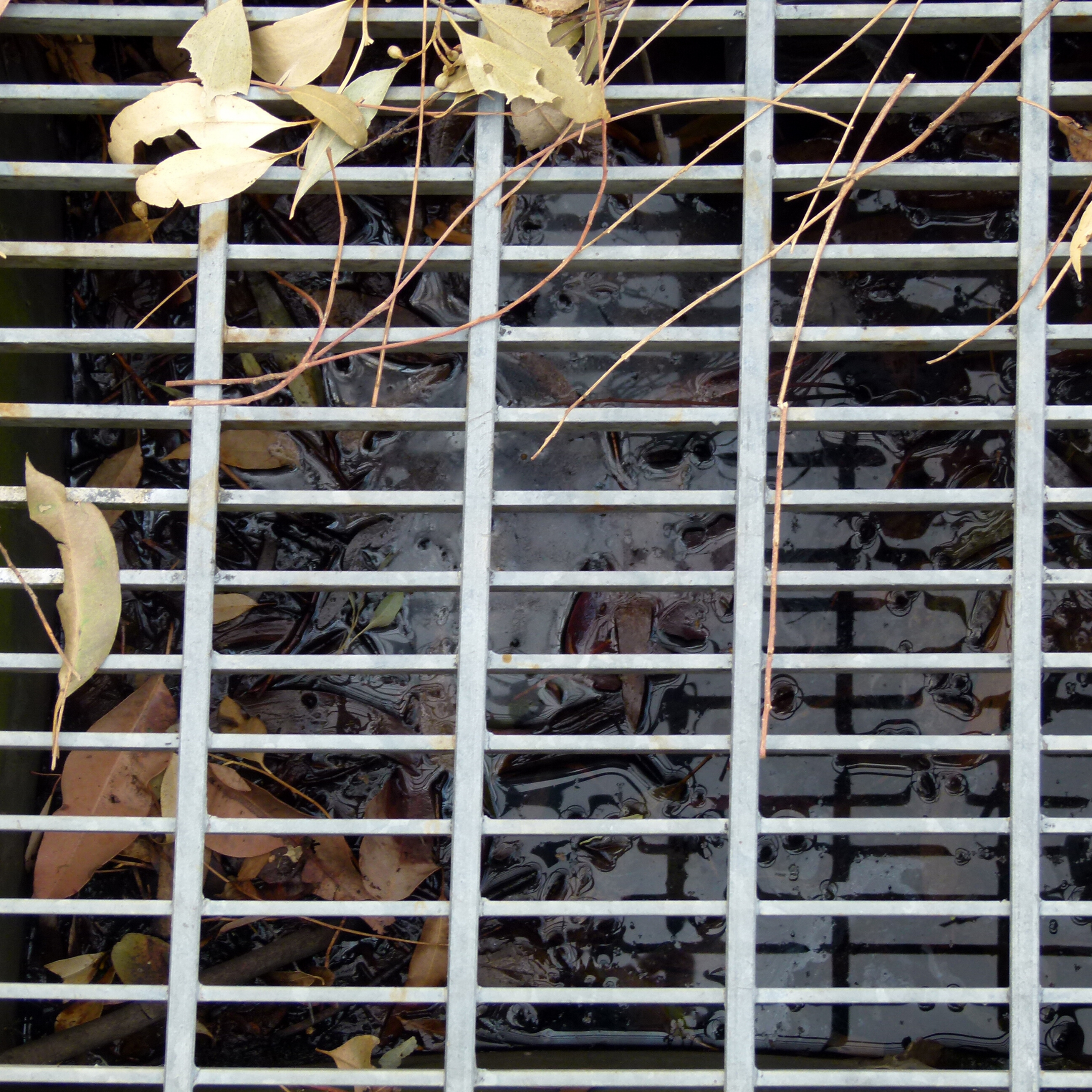 Azienda Ecologica Si.Mo. Spurghi (Milano)